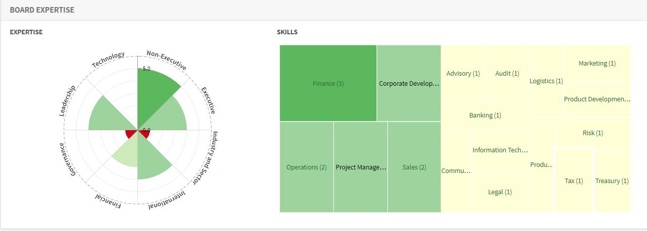 CSR Board Skills Matrix